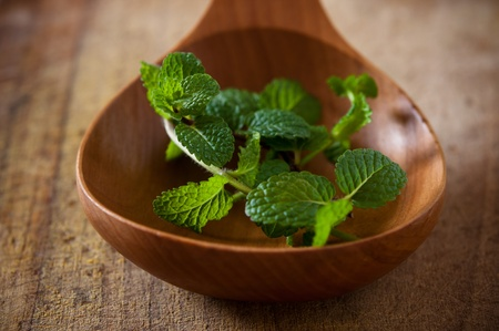 Mint on wooden spoon