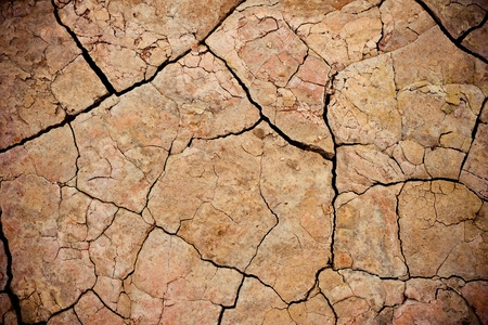 cracked mud - illustrated with beautiful colors photo