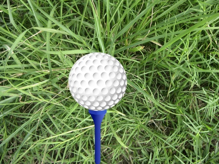 Gold ball on peg with grass background Stock Photo - 12651634