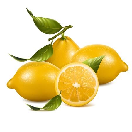 Los limones con corte - la imagen puede ser cambiar el tamaño a cualquier límite Ilustración de vector
