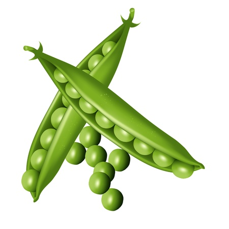 side dish: Green pea and pease-cod