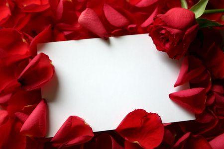all love: Fotografia per tutto l'amore e la vacanza eventi con momenti molto speciali.