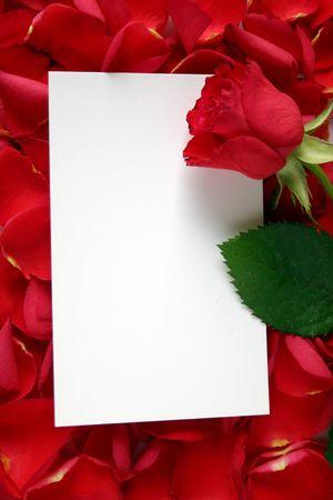 all love: Foto per tutto l'amore e gli eventi festivi, con momenti molto speciali. Archivio Fotografico