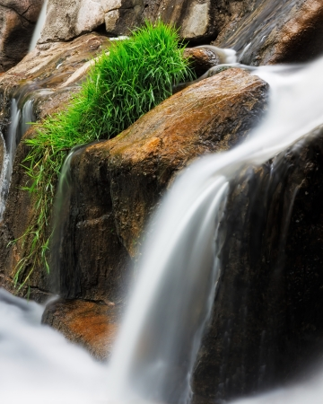 fallin: giant boulders of a stream create a waterfall with mimicking fallin grass  creamy textures created by  timelapse photography make water silky smooth  in contrast, a patch of green grass trails the water down the slope of the falls