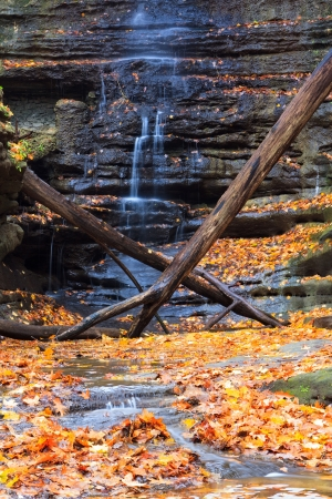 The slow trickle of an autumn waterfall framed by fallen logs and maple leaves. orange, yellow and red leaves provide banks for a stream formed by the flowing falls. 版權商用圖片