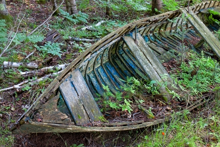 disintegrate: At its final harbor, a broken down old vessel slowly disintegrates on the forest floor  Once providing its sailors safe passage between lakes, it only passengers are now the young flora and decomposing leaves of the woodland