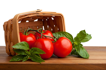 Surrounded by sweet basil, four red juicy vine ripened tomatoes fall out of a woven basket onto a wooden cutting. white background Banco de Imagens