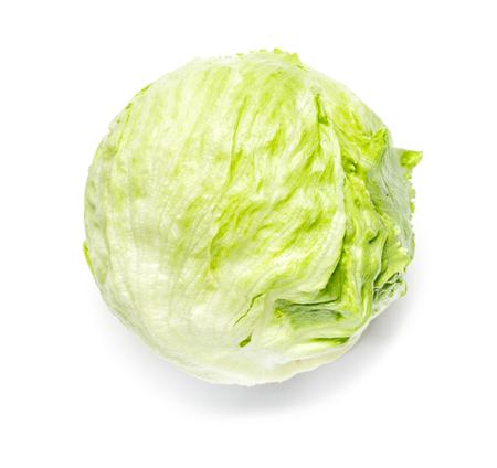 Head of Iceberg Lettuce on White 스톡 콘텐츠