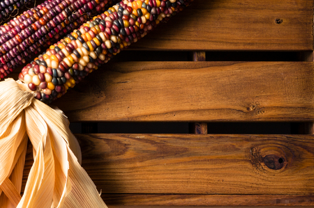 Decorative Indian Corn Maize on Weathered Wooden Crate