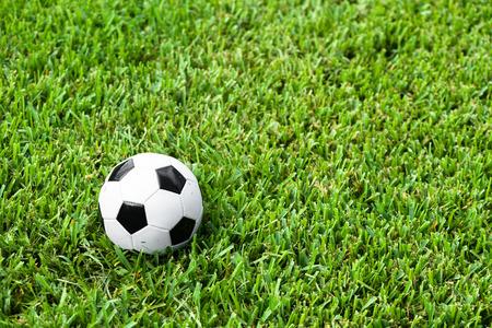 futbol soccer: Black and white traditional soccer ball football futbol on grass