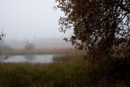 myst: Misty view Stock Photo