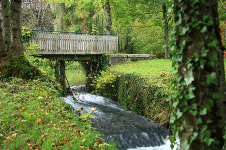 bridge in forest photographed close in autumn photo
