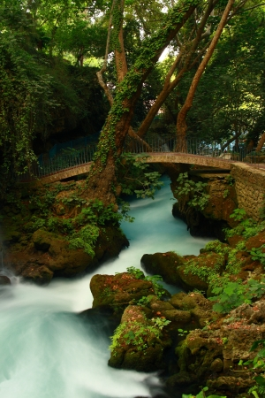 tourquoise: bridge on waterfall with tree and tourquoise stream