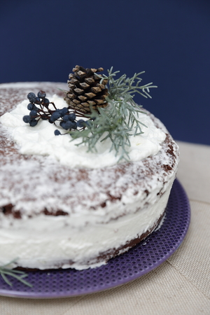Christmas snow cake with some decoration on it