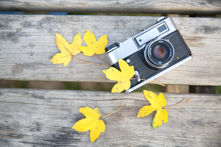 Old two photo camera in leaves