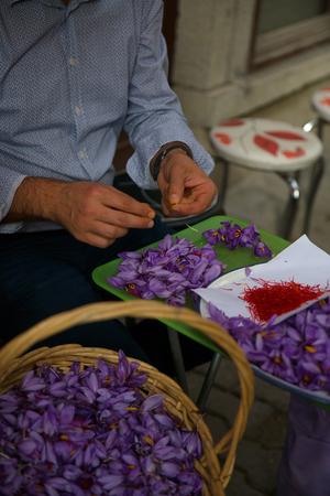 Man working on saffron