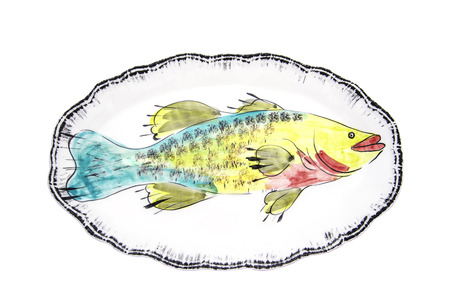 porcelain dish for fish with white background photo