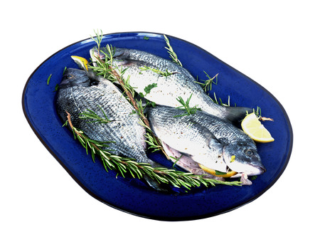 sparus: tree fresh fish  sparus aurata on a platter on white background