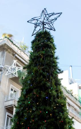 big star: big green tree and big star on the street