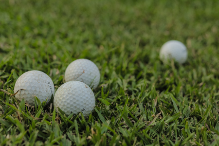 Golf balls on the green grass.
