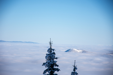 bosna and herzegovina: View to the mist from the top of the mountain Jahorina in Bosnia and Herzegovina Stock Photo