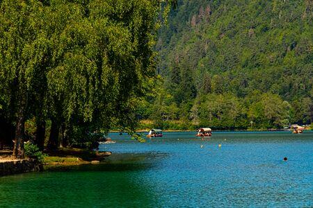 Tourist enjoying the Blade lake and Boats going to Church island Фото со стока