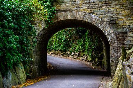 Road leading under the bridge through the forest in Frankfurt