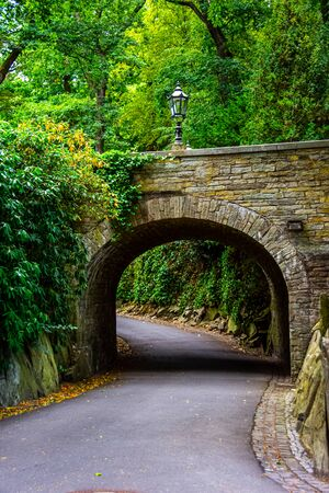 Road leading under the bridge through the forest in Frankfurt, Germany