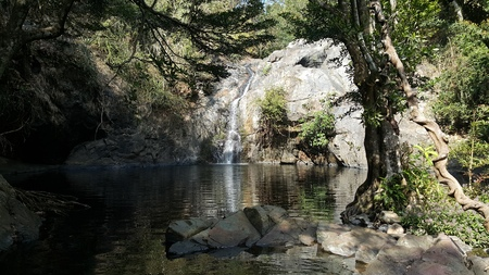 Small waterfall in forest. Banque d'images