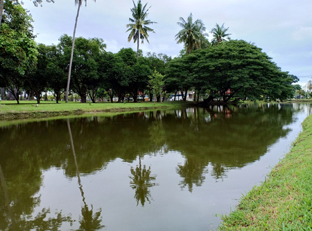 Swamp in historical park.