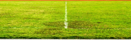 football field with green grass  photo