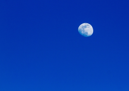 Moon on blue sky in the evening  photo