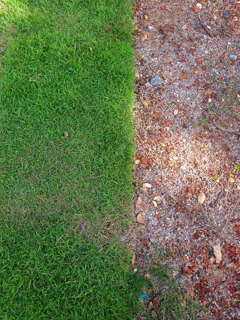 harmonization: Gardens were rebuilt  The grass have not harmonization  Stock Photo