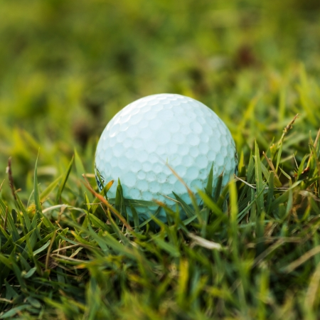 Golf ball on grass in the evening  photo