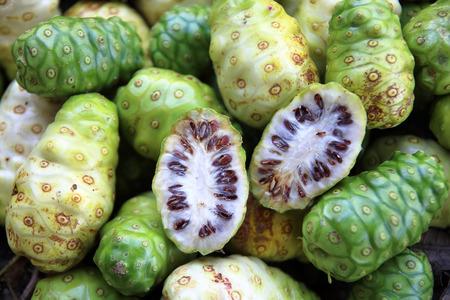 exotic fruit  great morinda, Indian mulberry photo