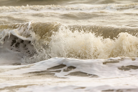 wavely: Close up Ocean wave water.