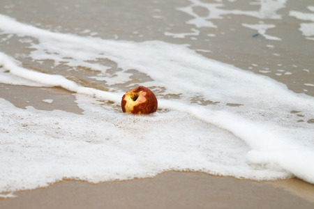 bad apple: Apple rotten on the beach