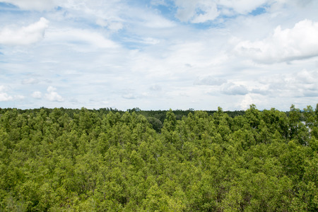 nimbi: clouds in the blue sky, Sky background Stock Photo
