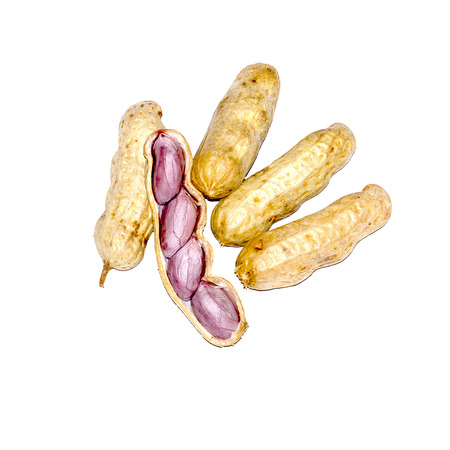 sports shell: Boiled peanuts on white paper.