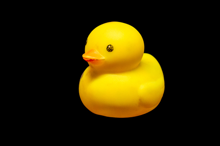 old yellow duck rubber on black background.