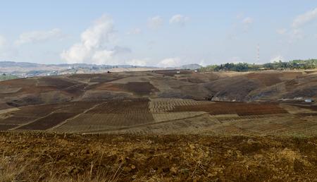 barren land: Barren land