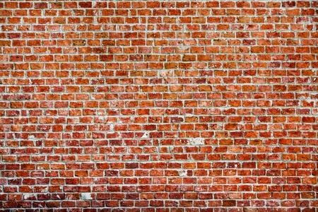 レンガの壁。