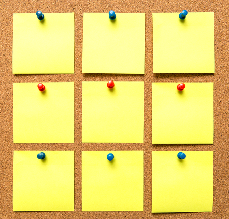 corkboard: Corkboard and note papers with pins.