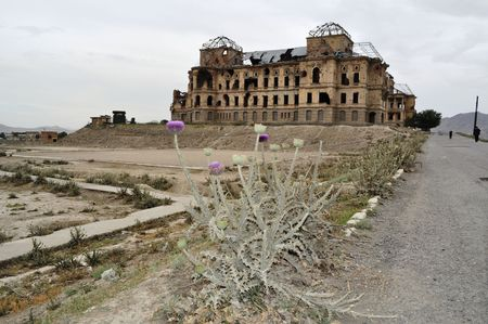 bombed: Afghanistan, Kabul Thistles and Garden of Darul Aman Palace, 2010 July - Destroyed Palace