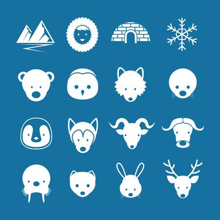gronostaj: Winter, Nature Travel and Wildlife