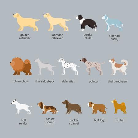 Dog Breeds Set, Large and Medium Size, Side View, Vector Illustration