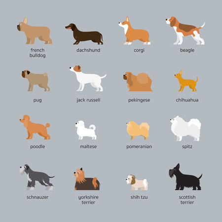Dog Breeds Set, Small and Medium Size, Side View, Vector Illustration Vectores