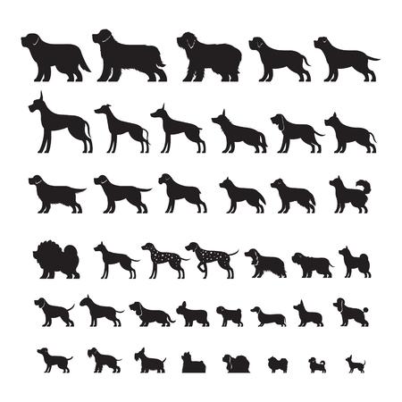 Dog Breeds, Silhouette Set, Side View, Vector Illustration
