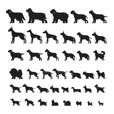 Dog Breeds, Silhouette Set, Side View, Vector Illustration