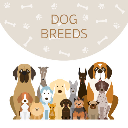 Grupo de ilustración de razas de perros, vista frontal con fondo, mascota
